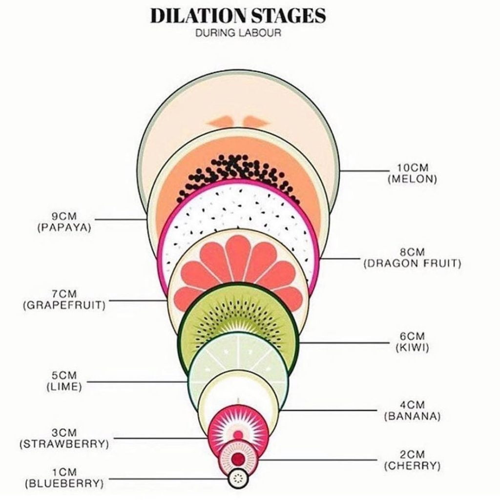 Creative Way To Learn About Dilation Stages During Labour.  .  The Birth Of Your...