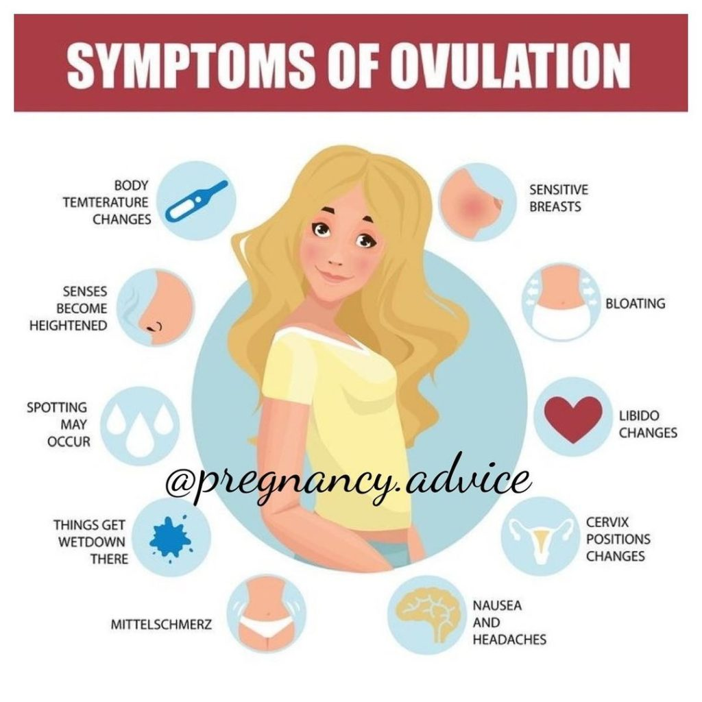 Ovulation Symptoms  . By:   . Ovulation Symptoms Aren'T Difficult To Notice. Once You Know What To Look For, You'Ll Be Surprised How Easy It Can Be. J...