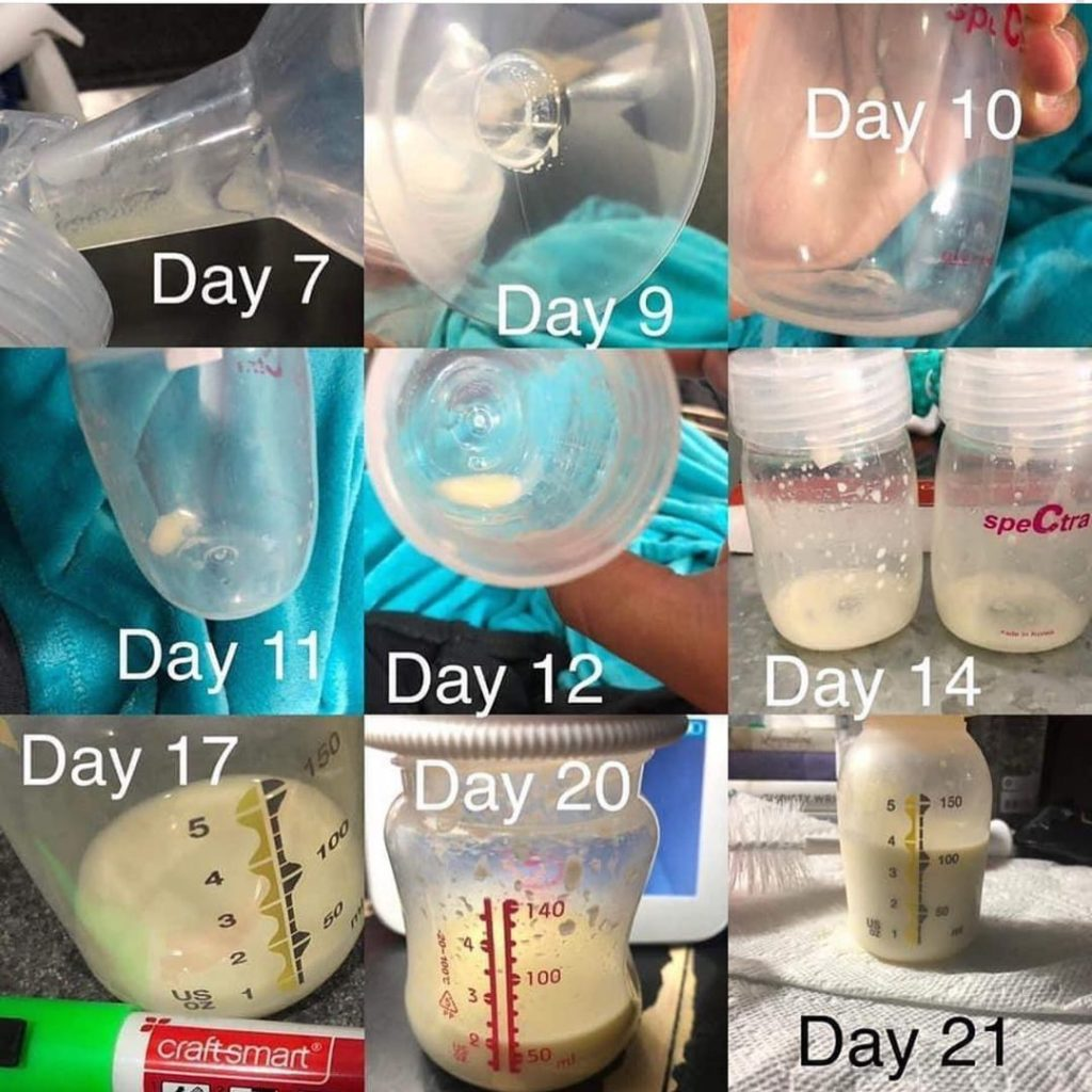Relactation: Check Out Relactation Journey. As You Can See, Slow And Steady Wins The Race — Expect Very Little Milk In The Beginning. What Really Work...