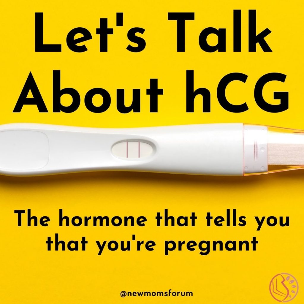 Human Chorionic Gonadotropin More Commonly Known As Hcg