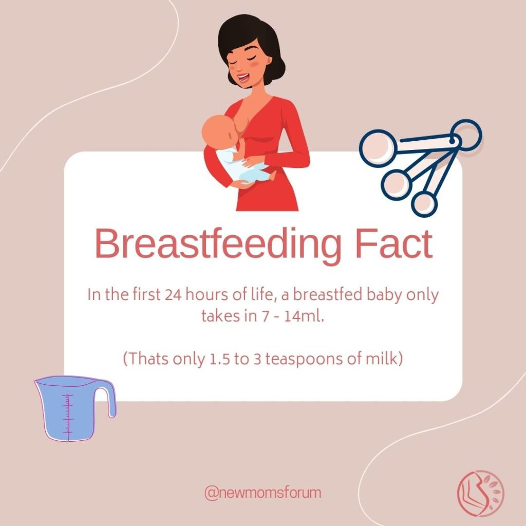 Breastfeeding Facts Early Feeding First 24 Hours