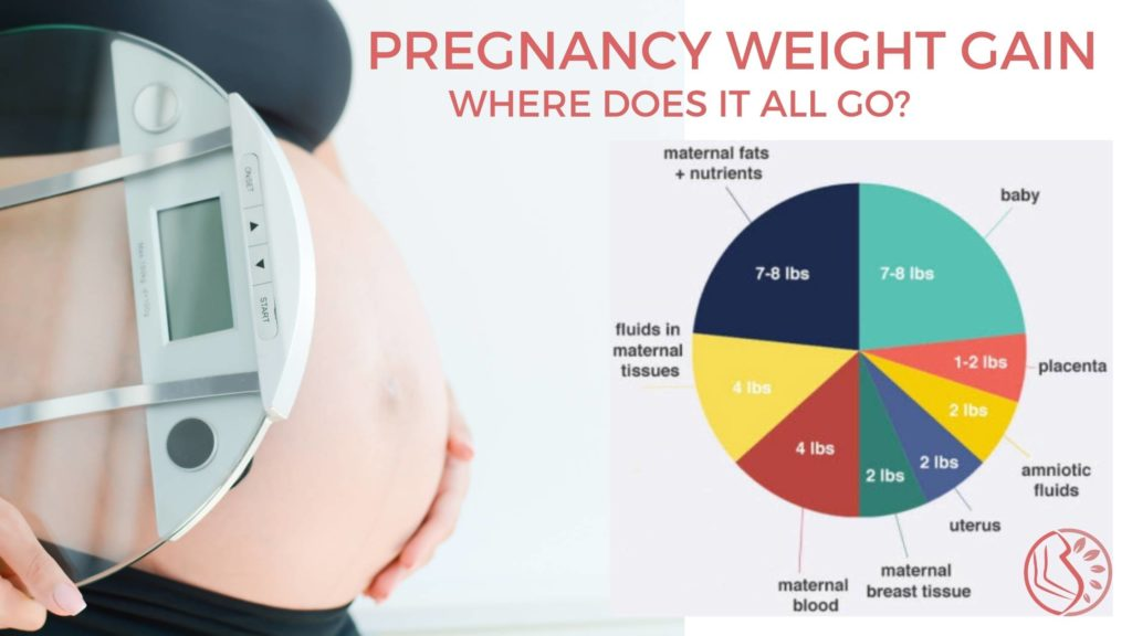 Pregnancy Weight Gain Distribution
